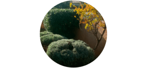 entretien_jardins-accueil